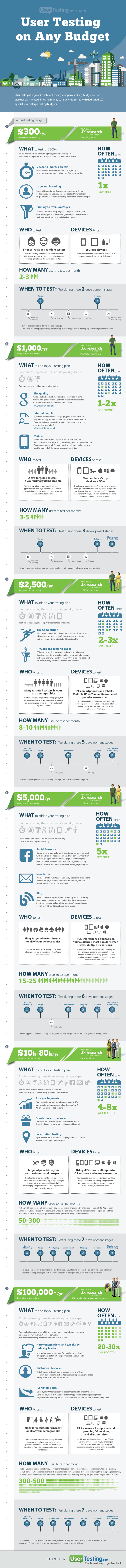User Testing on Any Budget Infographic