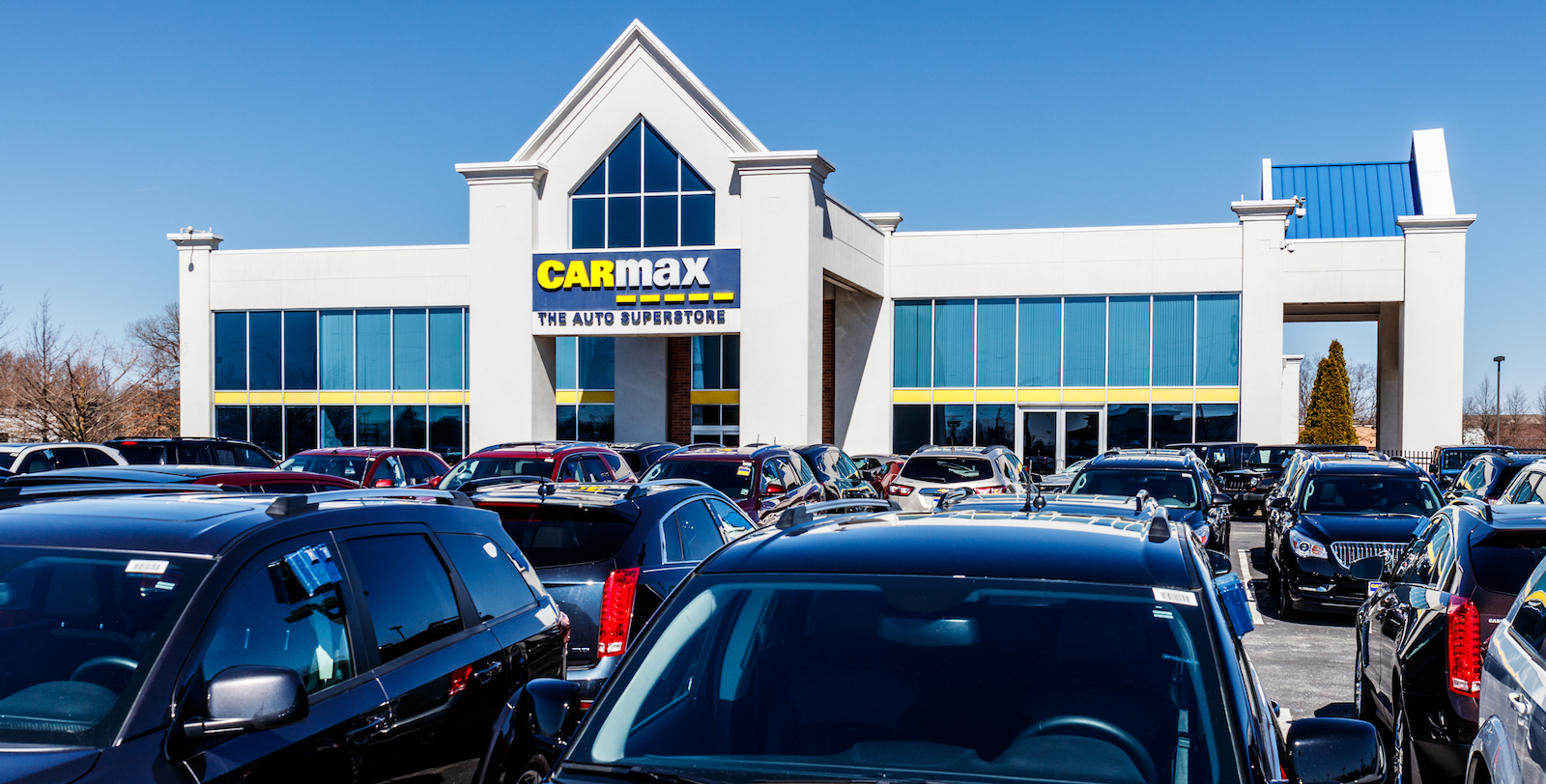 Translating empathy into actionable results with CarMax's Archie Miller and Chip Trout